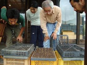熊野大学 野菜作り編