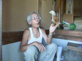 鶏いりませんか~?