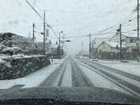 今日のランチと春の雪