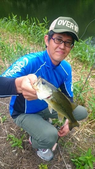 和歌山 野池 青木虫 3