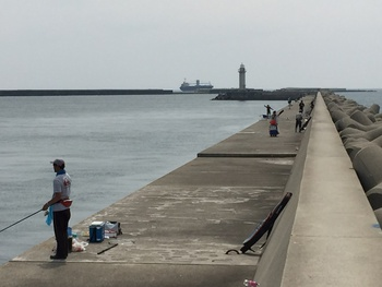 青岸釣り場調査