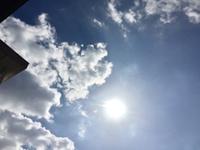 太陽を浴びる