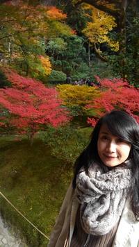 晩秋の京都旅と、12月のお茶会のお知らせ♪