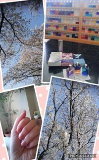 4月の新月瞑想会☆☆☆