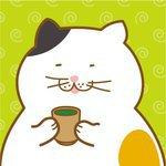 三毛猫ヒロ