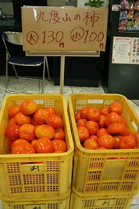 九度山の柿 販売中