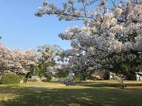 温山荘公園♪