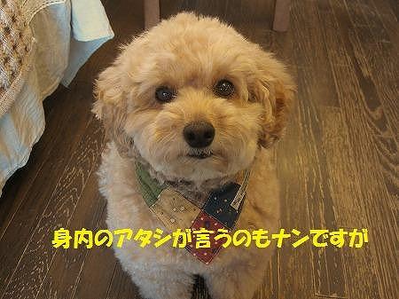 「生命」~いのち~To you of dear