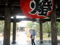 日本海の旅13