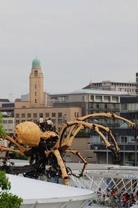 巨大クモが…