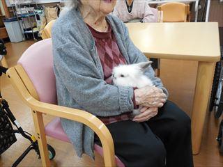 初のふれ愛ボランティア 介護施設