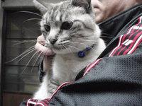 猫 爪切り ルミちゃん&マミちゃん