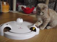猫 電動おもちゃ パウンス