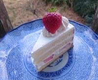 いちごショートケーキ☆