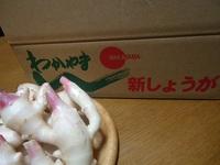 和歌山の生姜♪