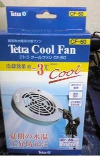 ふぐ太郎の扇風機