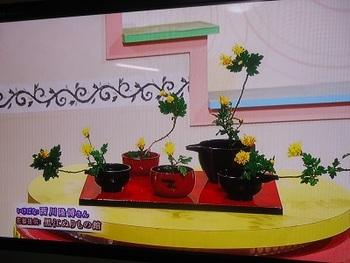 あっとテレわか 花器提供しました♪