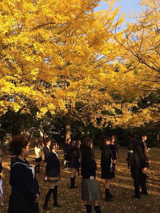 【まとめ】おどるんや秋まつり2014