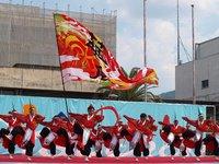 【告知】第17回 紀の国やっちょん祭り