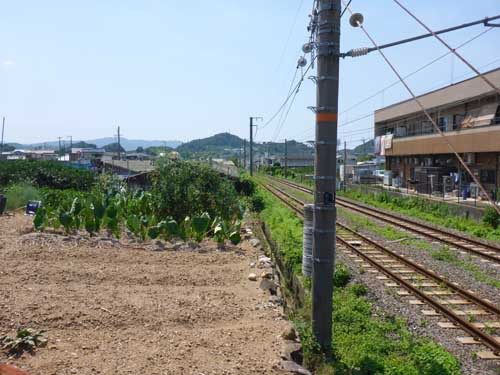 有田鉄道湯浅海岸廃線跡