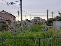 武豊線半田駅