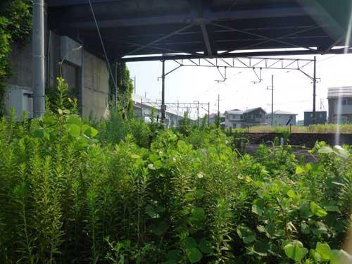 北陸線糸魚川駅