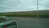 堤防の     草刈り