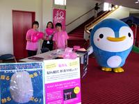 和歌山★白浜 癒しフェスティバル2015にブース出展しました