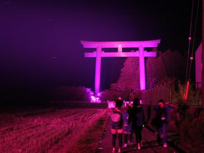 ピンクライトアップされたお熊野本宮大社の大鳥居