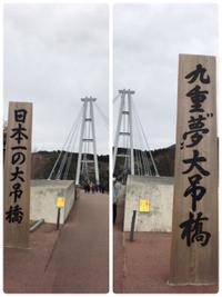 九重夢大吊橋!