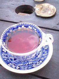 国産有機無農薬紅茶~限定