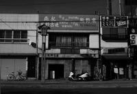 shingu#25