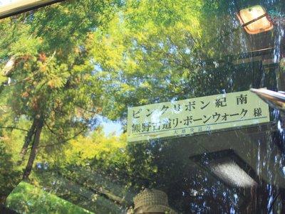 熊野本宮大社ピンクライトアップ 熊野古道リ・ボーンウォーク