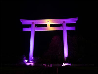 乳がん早期発見啓発のためにピンク色にライトアップされた熊野本宮大社 大斎原の大鳥居