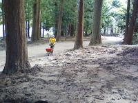 台風12号被災の熊野本宮大社 大斎原で清掃ボランティア