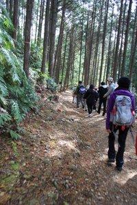 熊野古道散策風景写真
