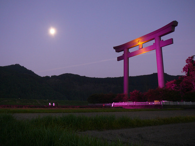 熊野本宮大社ピンクライトアップ