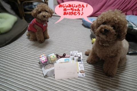 長崎からのお届け物♪