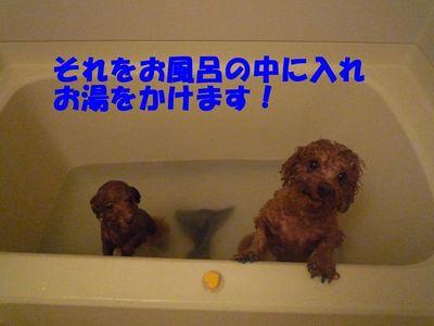 ニンニク風呂初挑戦!