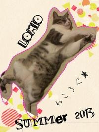 summer 2013★