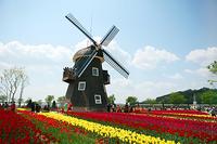 オランダへようこそ