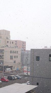 本日のお教室とえべっさんと雪