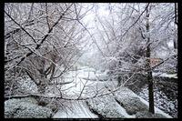 雪、和歌山