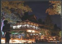 竹燈夜フォトコンテスト2018 1部(in山東)