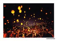 今年の竹燈夜in山東は中止!!