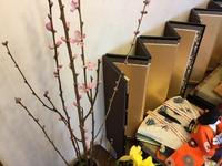 桃の花とカニ。