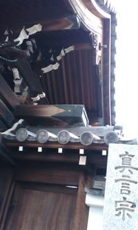 お寺さんで。