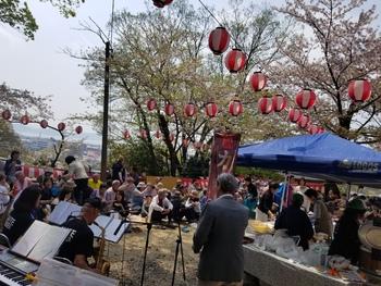 桜を守る会にて
