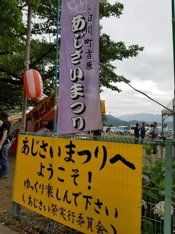 有田川あじさい祭り