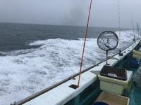 日ノ御埼沖ジャンボイサギ釣り